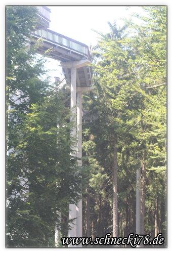 [Ausflugstipp] in WaldWipfelWeg